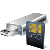 Flash Drive and Camera Card Icon